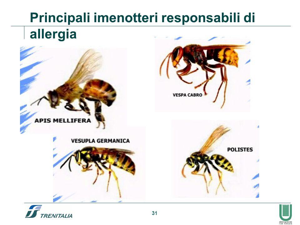 Principali imenotteri responsabili di allergia