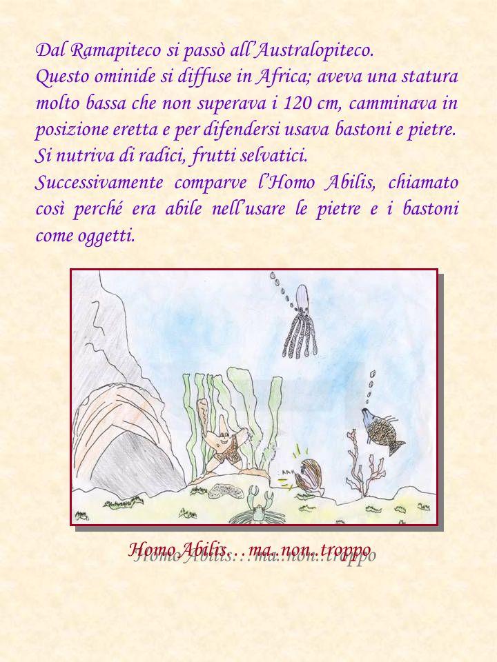 Homo Abilis…ma..non..troppo