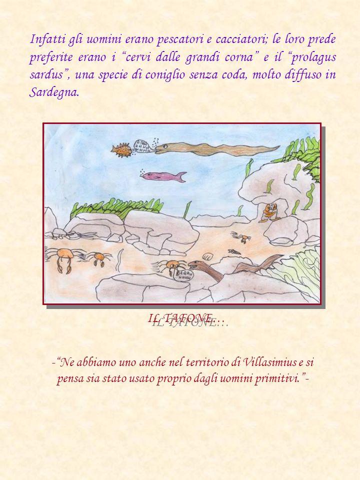 Infatti gli uomini erano pescatori e cacciatori; le loro prede preferite erano i cervi dalle grandi corna e il prolagus sardus , una specie di coniglio senza coda, molto diffuso in Sardegna.