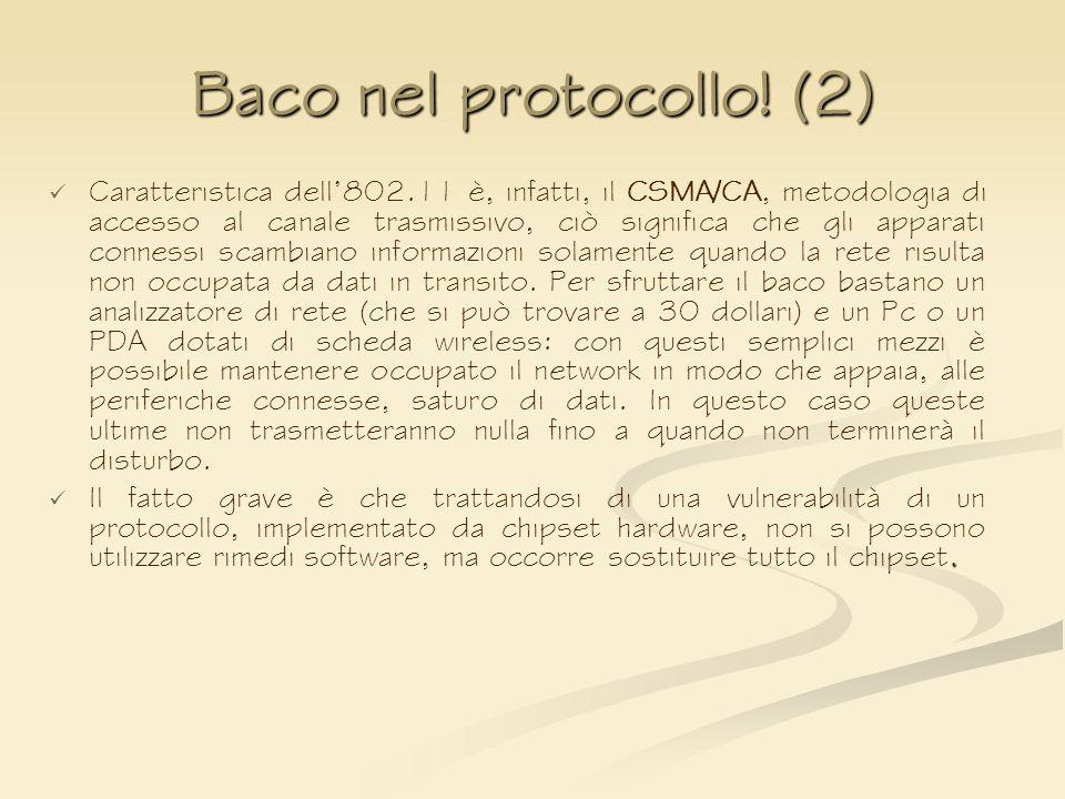 Baco nel protocollo! (2)
