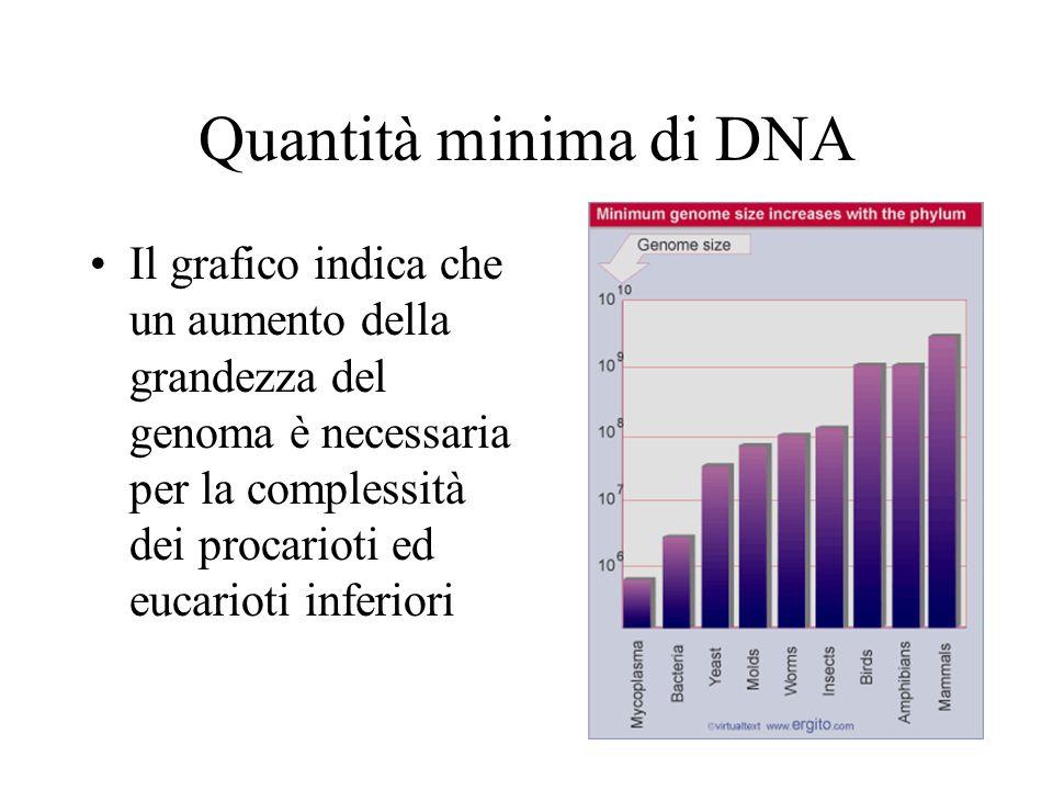 Quantità minima di DNA