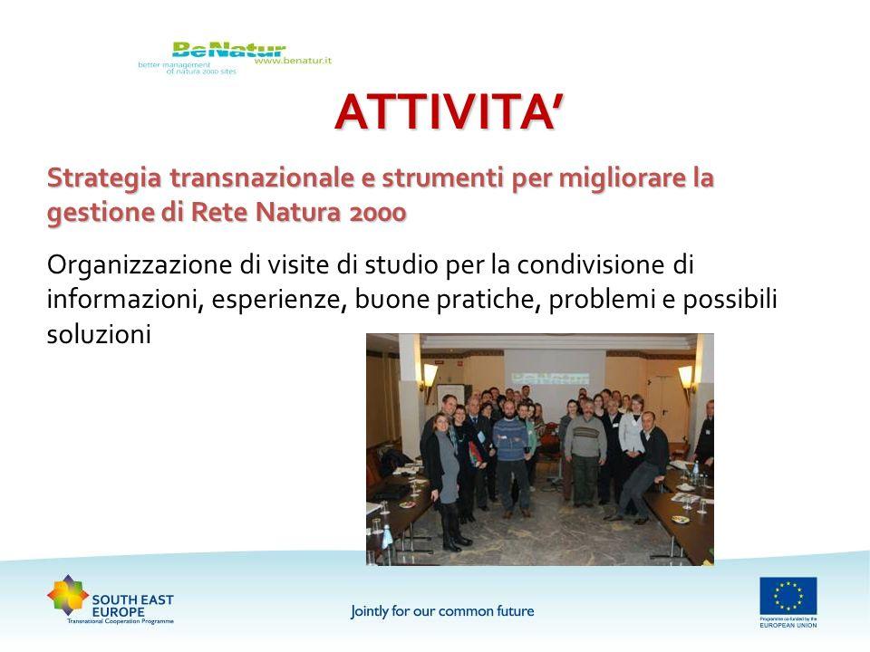 ATTIVITA'Strategia transnazionale e strumenti per migliorare la gestione di Rete Natura 2000.