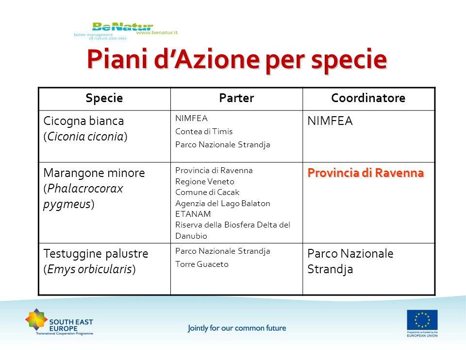 Piani d'Azione per specie