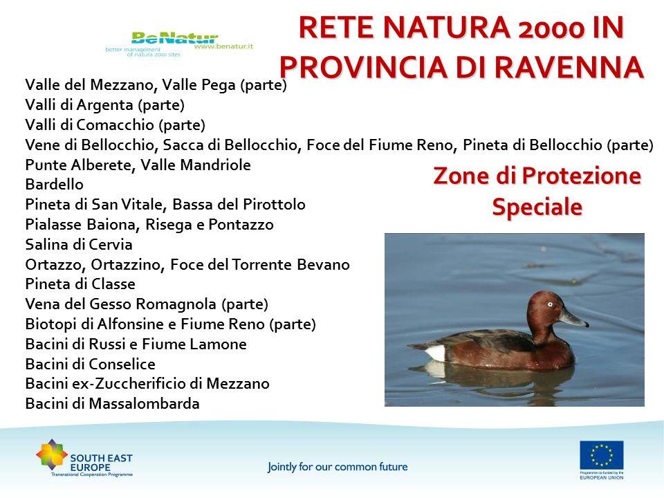 RETE NATURA 2000 IN PROVINCIA DI RAVENNA Zone di Protezione Speciale