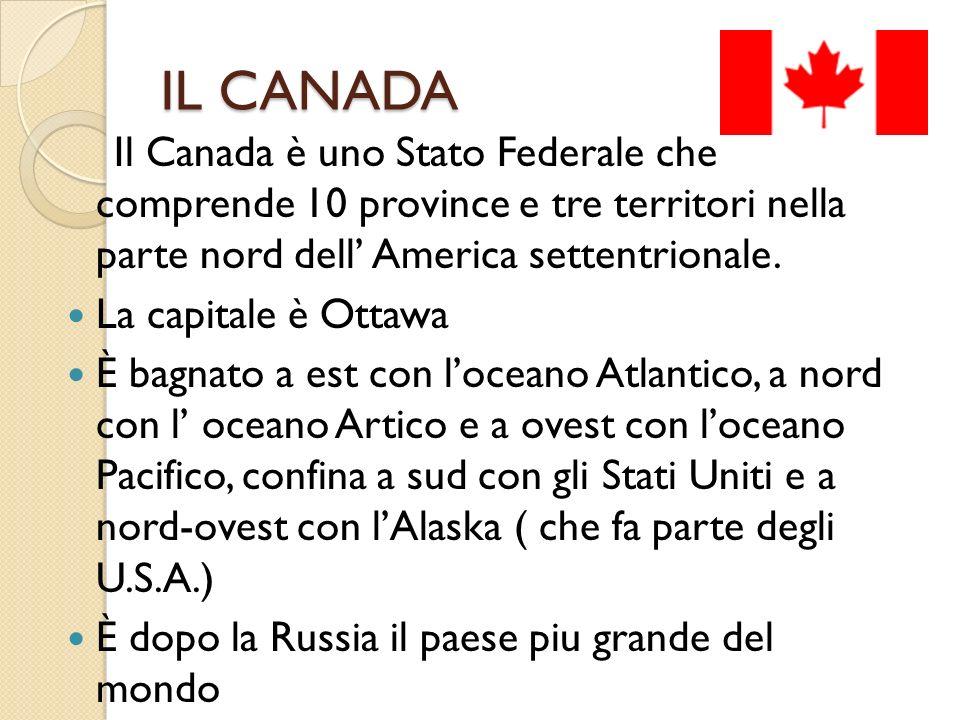 IL CANADA Il Canada è uno Stato Federale che comprende 10 province e tre territori nella parte nord dell' America settentrionale.