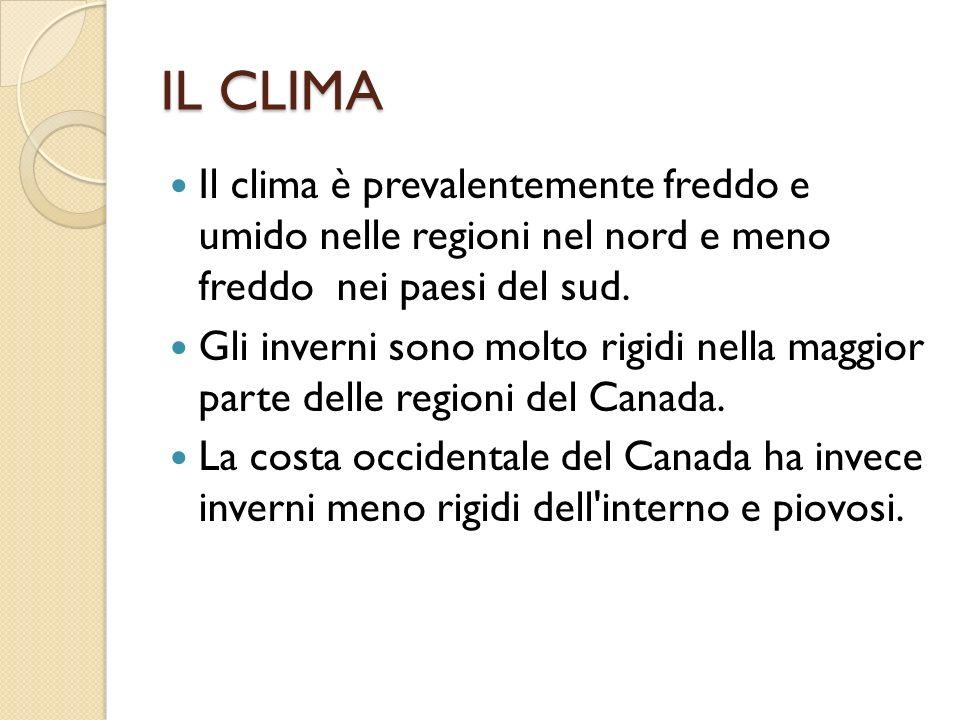 IL CLIMA Il clima è prevalentemente freddo e umido nelle regioni nel nord e meno freddo nei paesi del sud.
