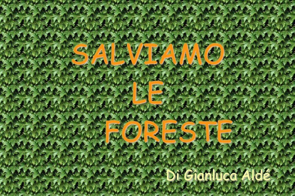 SALVIAMO LE FORESTE Di Gianluca Aldé