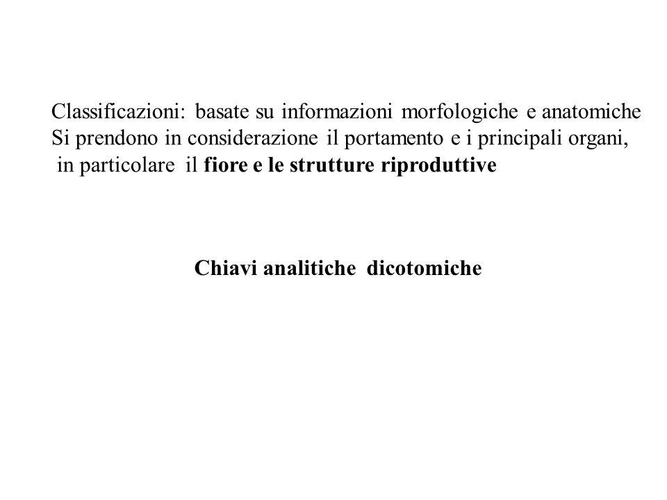 Classificazioni: basate su informazioni morfologiche e anatomiche