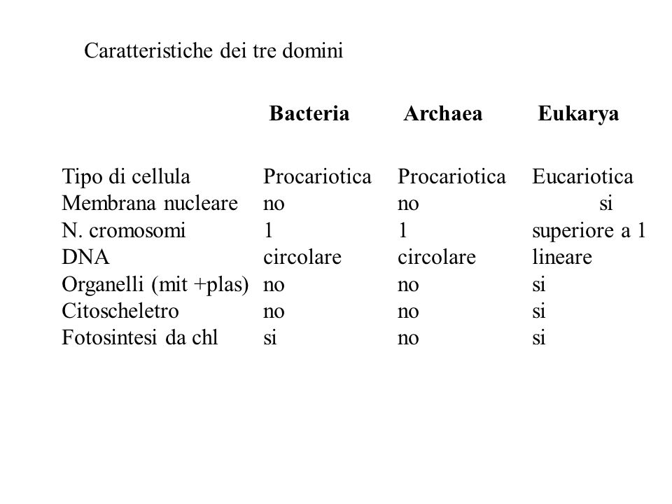 Caratteristiche dei tre domini