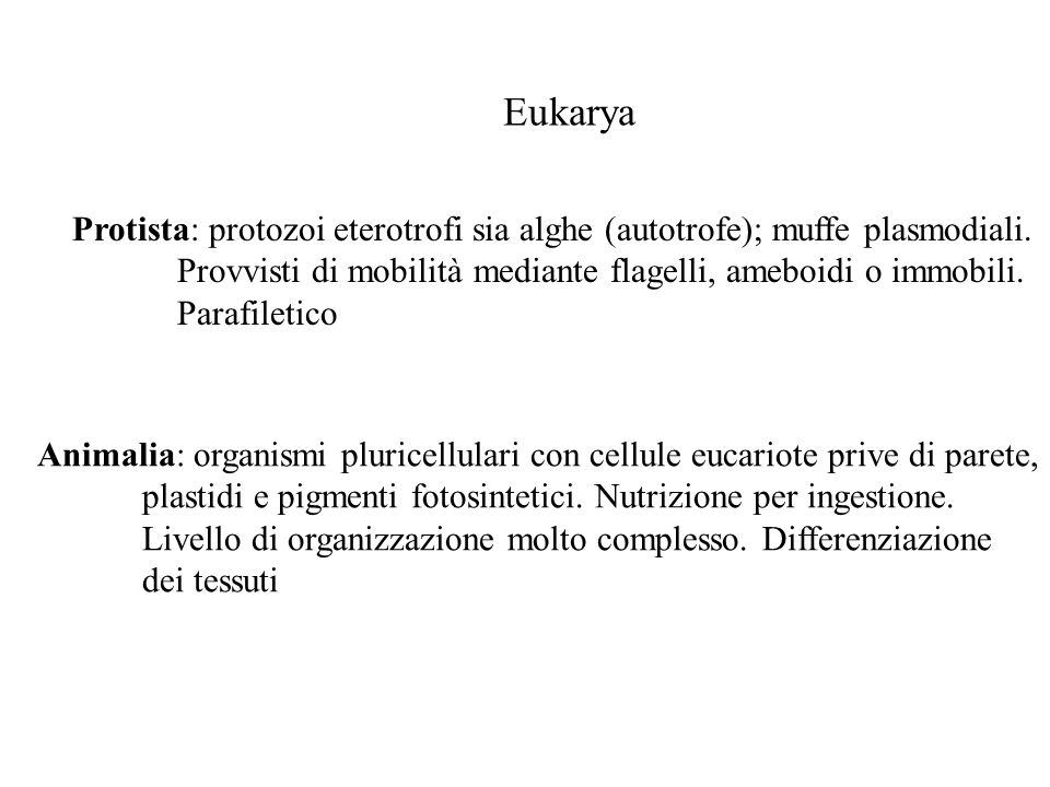 Eukarya Protista: protozoi eterotrofi sia alghe (autotrofe); muffe plasmodiali. Provvisti di mobilità mediante flagelli, ameboidi o immobili.