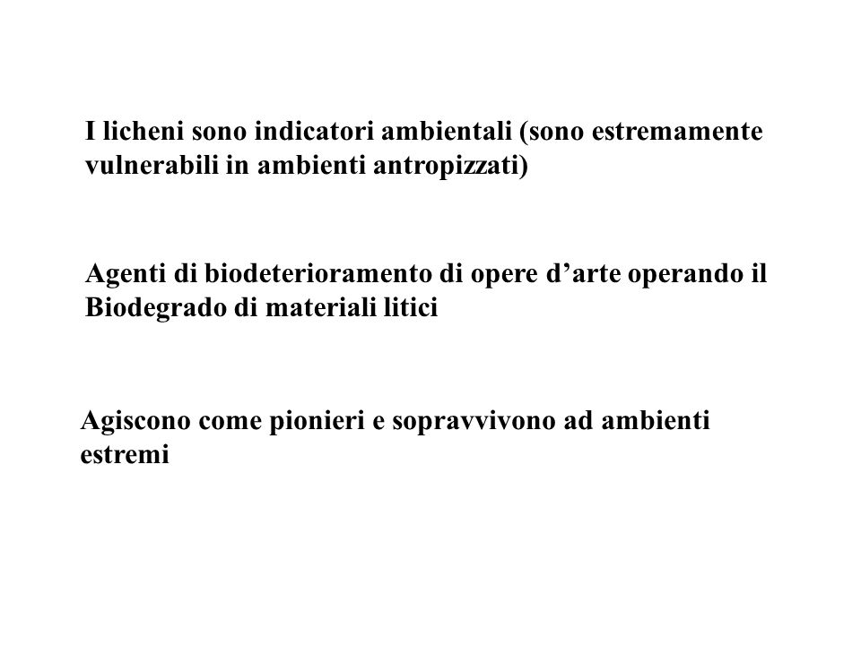I licheni sono indicatori ambientali (sono estremamente