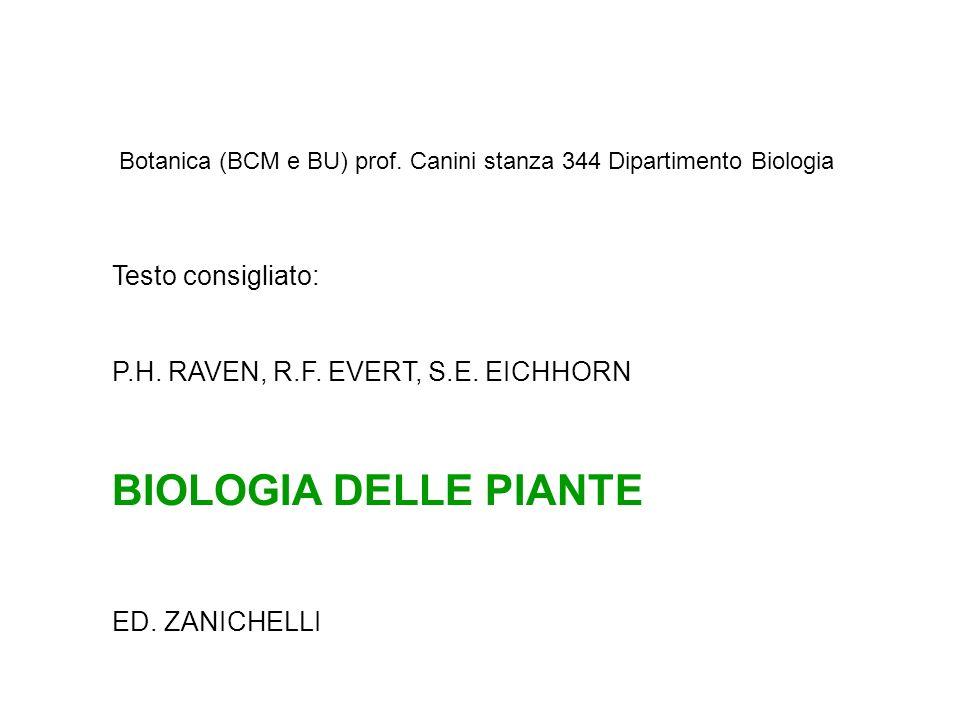 BIOLOGIA DELLE PIANTE Testo consigliato: