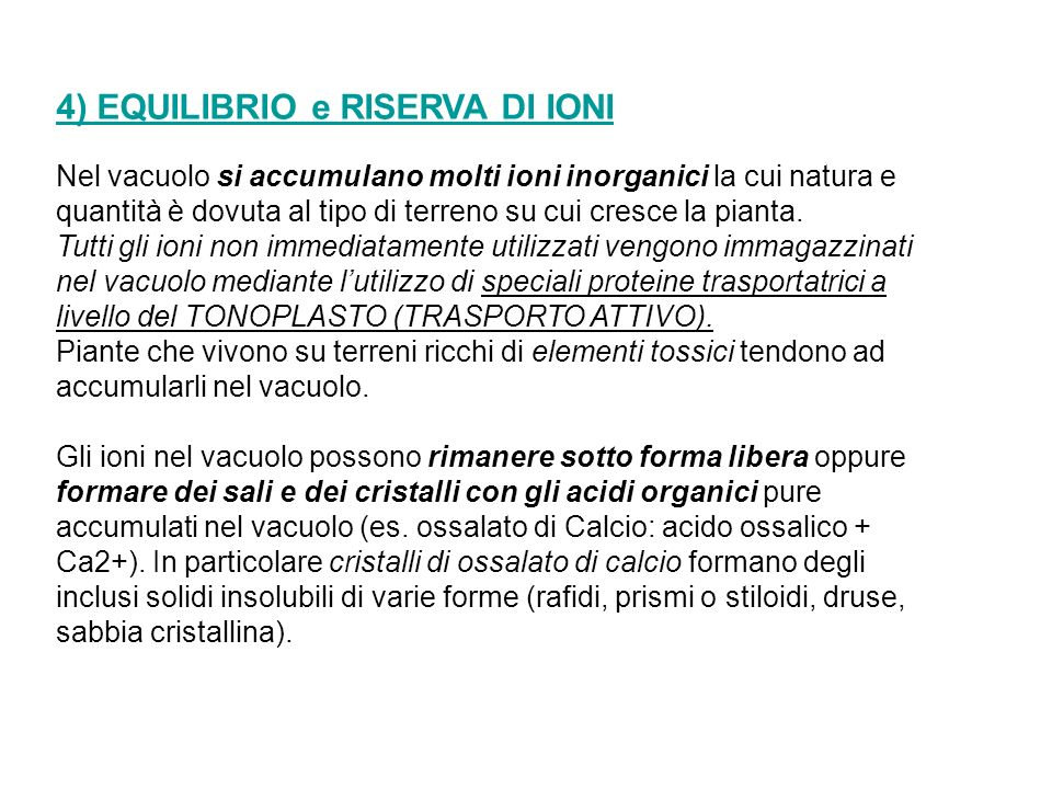 4) EQUILIBRIO e RISERVA DI IONI