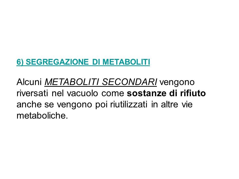 6) SEGREGAZIONE DI METABOLITI