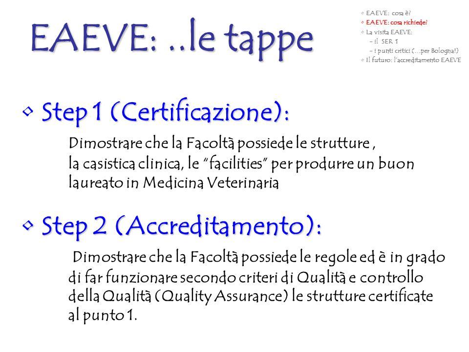 EAEVE: ..le tappe Step 1 (Certificazione): Step 2 (Accreditamento):