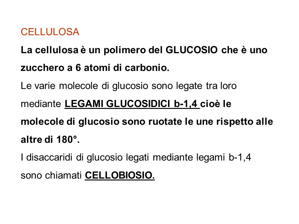 CELLULOSA La cellulosa è un polimero del GLUCOSIO che è uno zucchero a 6 atomi di carbonio.