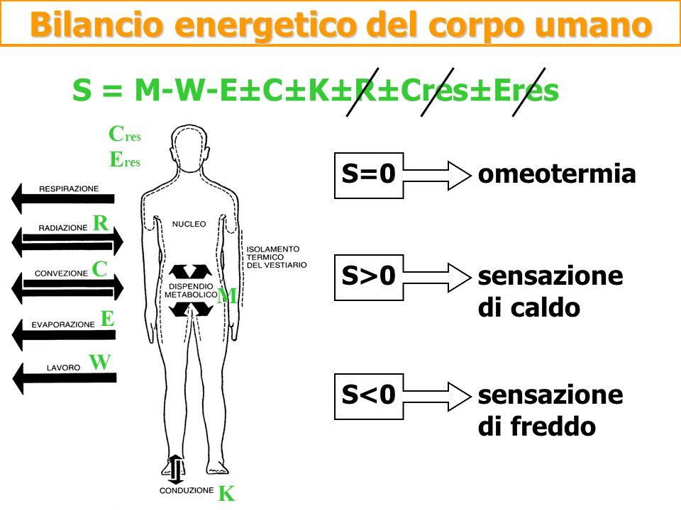 Bilancio energetico del corpo umano S = M-W-E±C±K±R±Cres±Eres