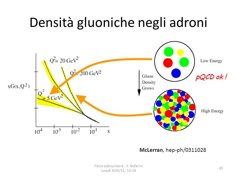 Densità gluoniche negli adroni