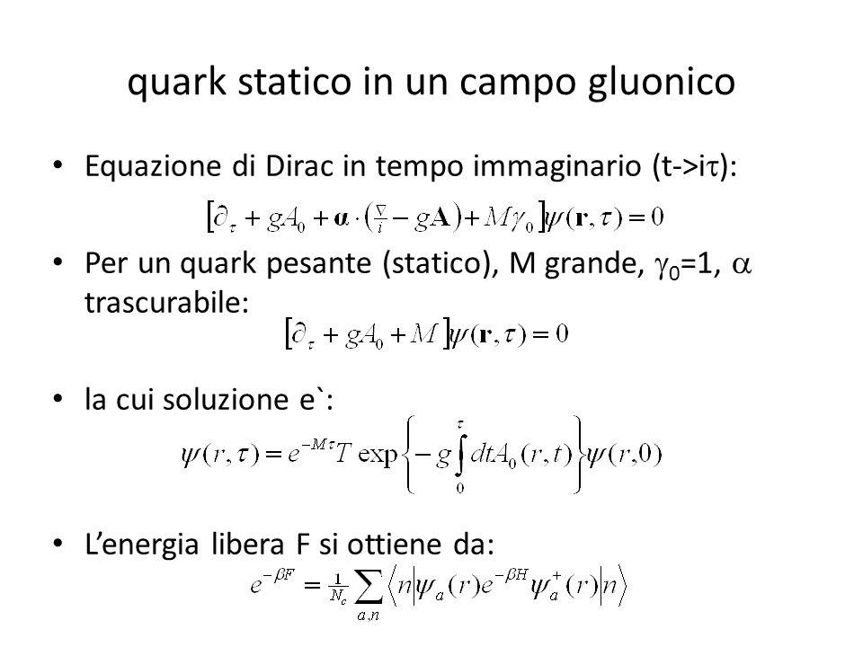 quark statico in un campo gluonico