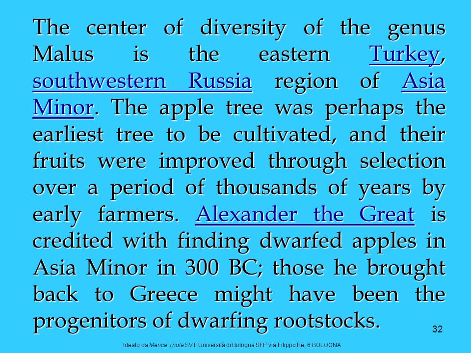 The center of diversity of the genus Malus is the eastern Turkey, southwestern Russia region of Asia Minor. The apple tree was perhaps the earliest tree to be cultivated, and their fruits were improved through selection over a period of thousands of years by early farmers. Alexander the Great is credited with finding dwarfed apples in Asia Minor in 300 BC; those he brought back to Greece might have been the progenitors of dwarfing rootstocks.