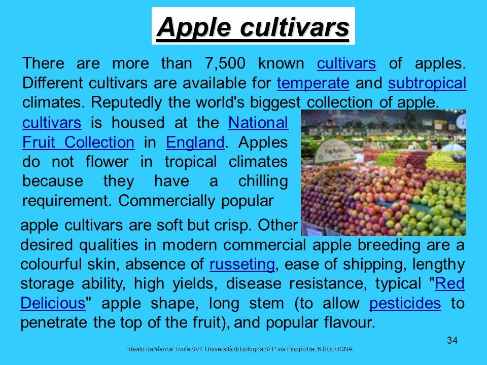Apple cultivars