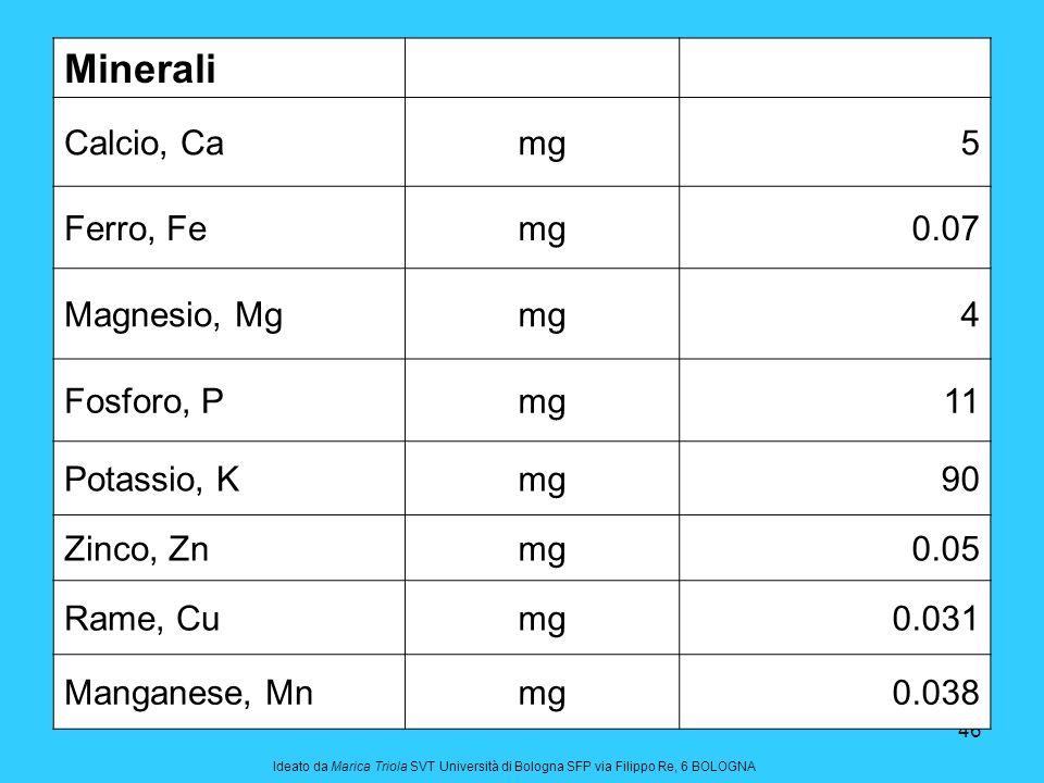 Minerali Calcio, Ca mg 5 Ferro, Fe 0.07 Magnesio, Mg 4 Fosforo, P 11