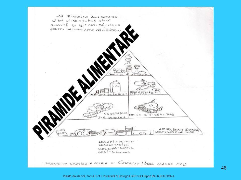 PIRAMIDE ALIMENTARE Ideato da Marica Triola SVT Università di Bologna SFP via Filippo Re, 6 BOLOGNA