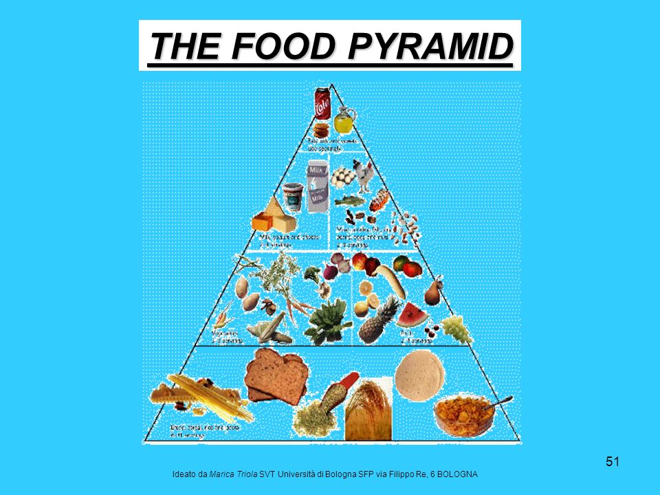THE FOOD PYRAMID Ideato da Marica Triola SVT Università di Bologna SFP via Filippo Re, 6 BOLOGNA