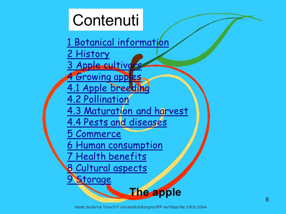Contenuti The apple 1 Botanical information 2 History