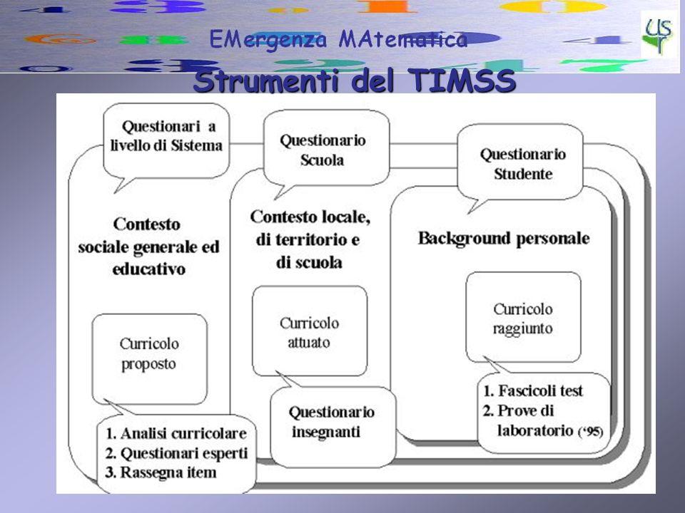 Strumenti del TIMSS