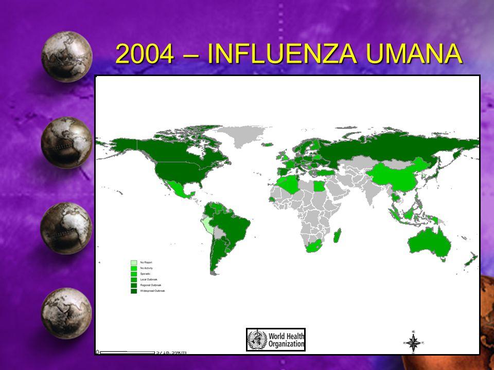 2004 – INFLUENZA UMANA