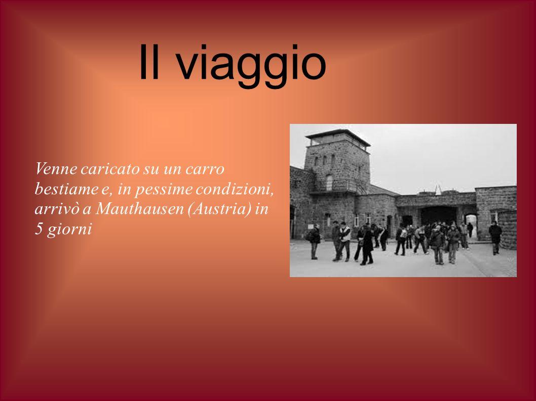 Il viaggioVenne caricato su un carro bestiame e, in pessime condizioni, arrivò a Mauthausen (Austria) in 5 giorni.