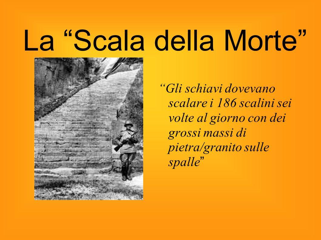 La Scala della Morte Gli schiavi dovevano scalare i 186 scalini sei volte al giorno con dei grossi massi di pietra/granito sulle spalle