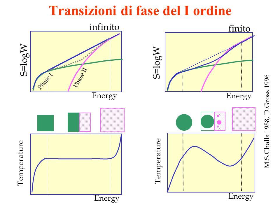 Transizioni di fase del I ordine
