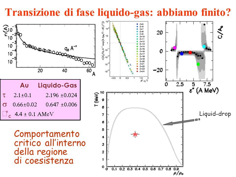 Transizione di fase liquido-gas: abbiamo finito