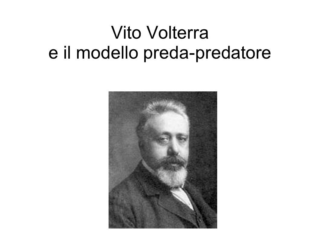 Vito Volterra e il modello preda-predatore