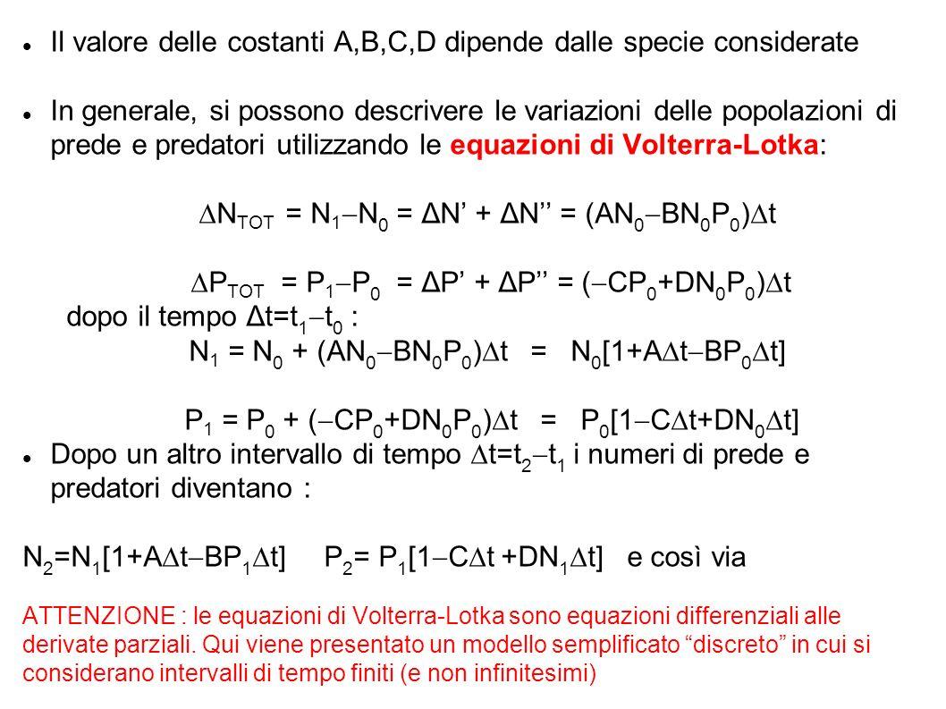 Il valore delle costanti A,B,C,D dipende dalle specie considerate