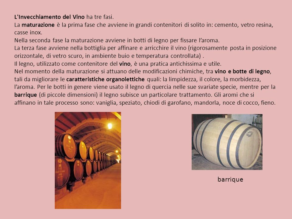 barrique L Invecchiamento del Vino ha tre fasi.