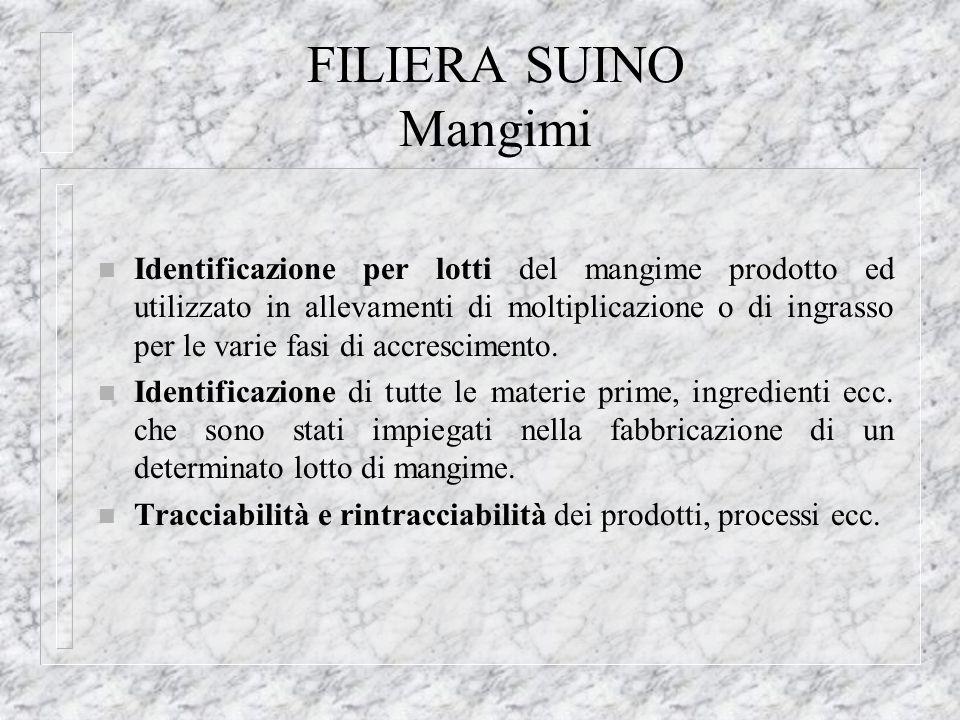 FILIERA SUINO Mangimi