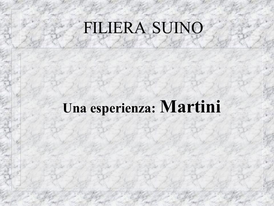 Una esperienza: Martini