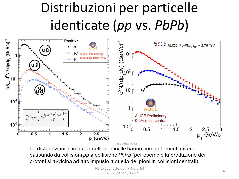 Distribuzioni per particelle identicate (pp vs. PbPb)