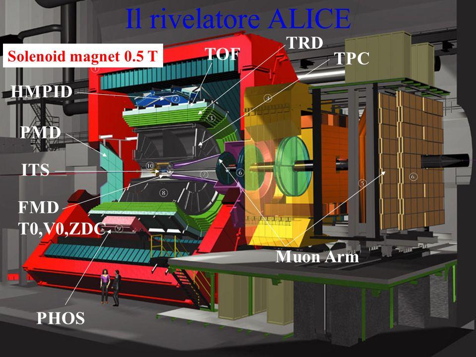Il rivelatore ALICE TRD TOF TPC HMPID PMD ITS FMD T0,V0,ZDC Muon Arm