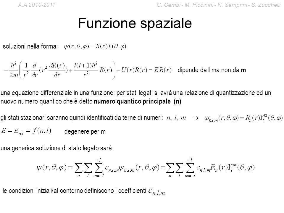 Funzione spaziale soluzioni nella forma: dipende da l ma non da m