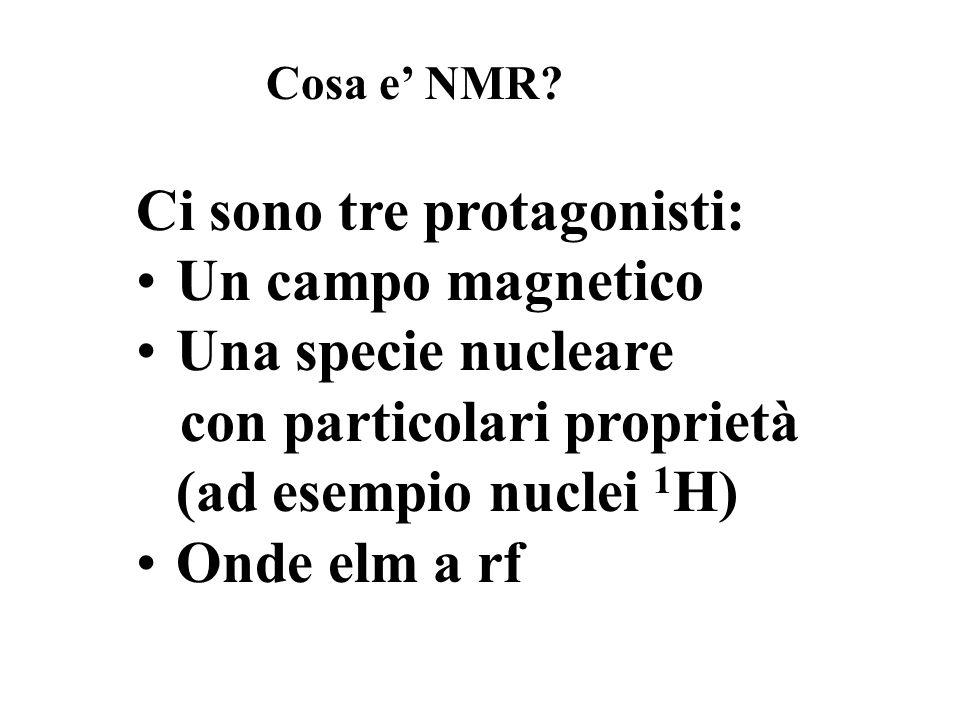 Ci sono tre protagonisti: Un campo magnetico Una specie nucleare