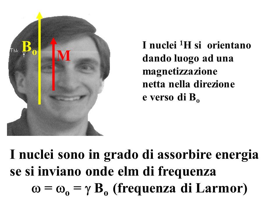  = o =  Bo (frequenza di Larmor)