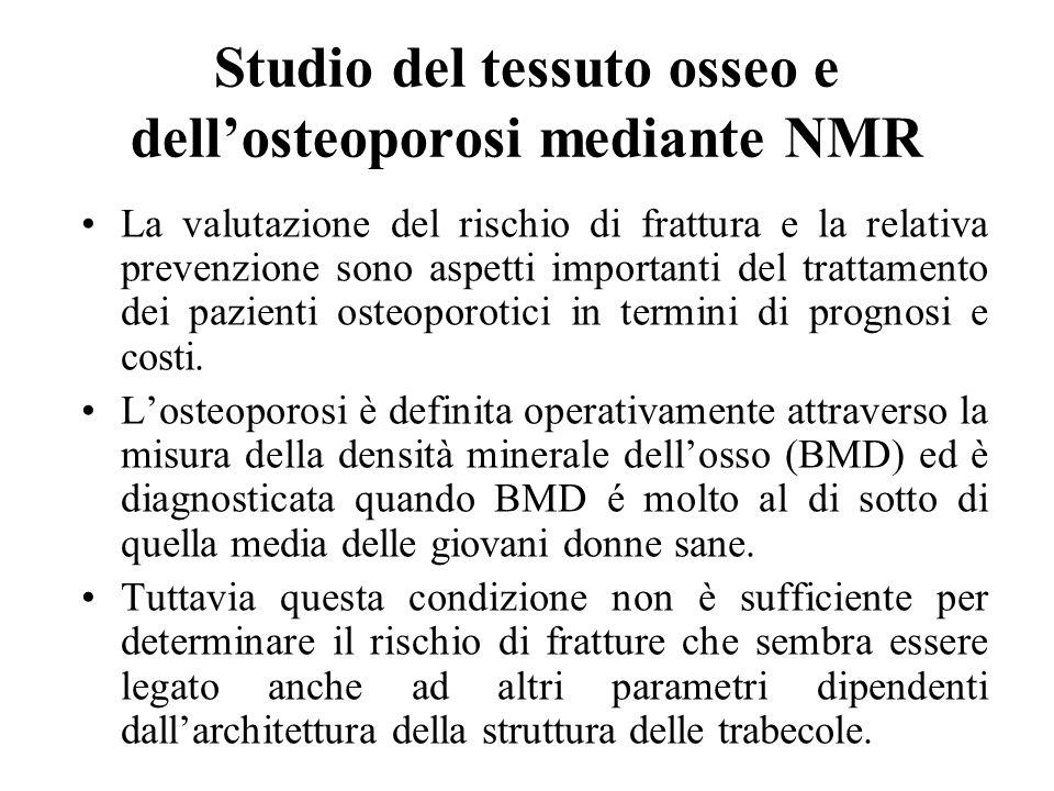 Studio del tessuto osseo e dell'osteoporosi mediante NMR