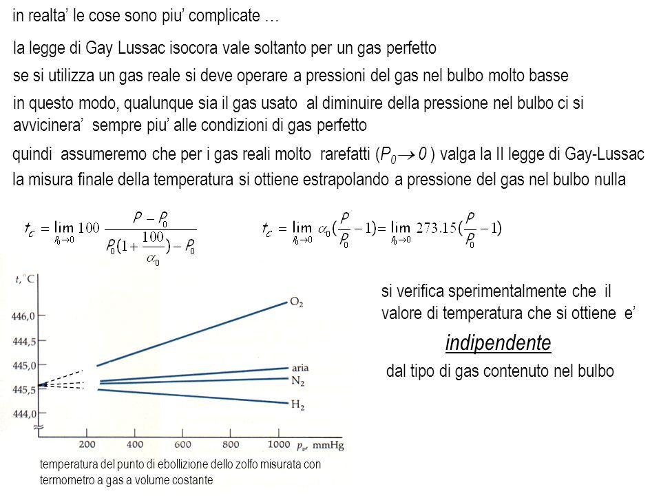 dal tipo di gas contenuto nel bulbo