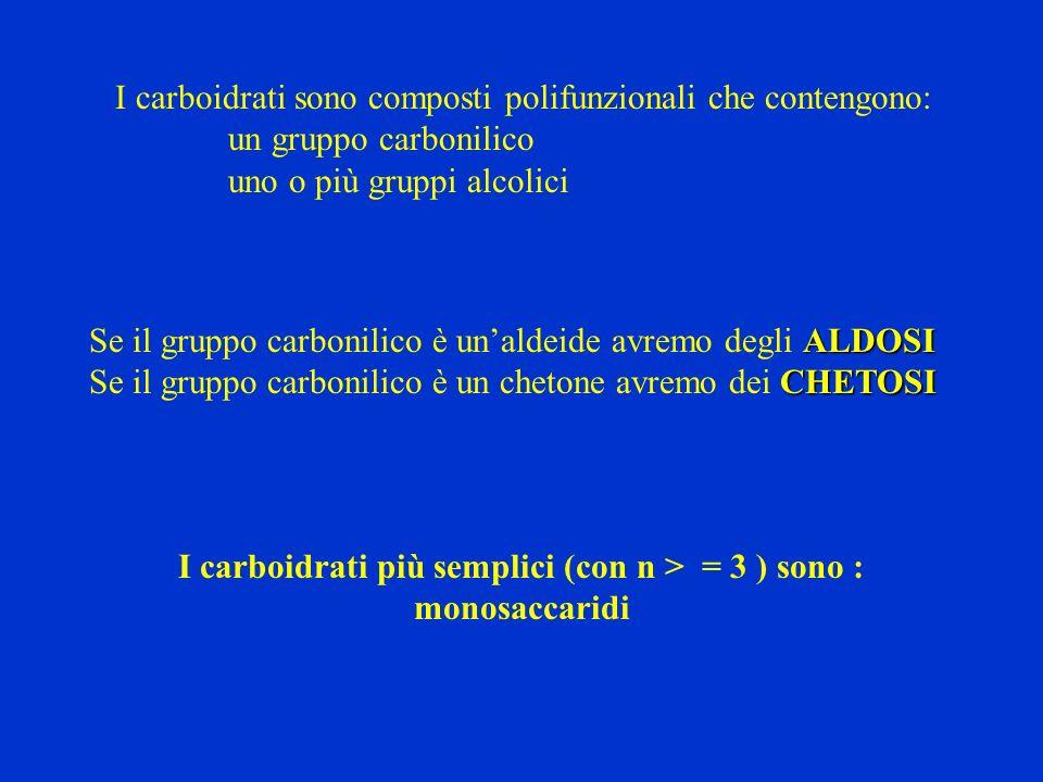 I carboidrati più semplici (con n > = 3 ) sono : monosaccaridi
