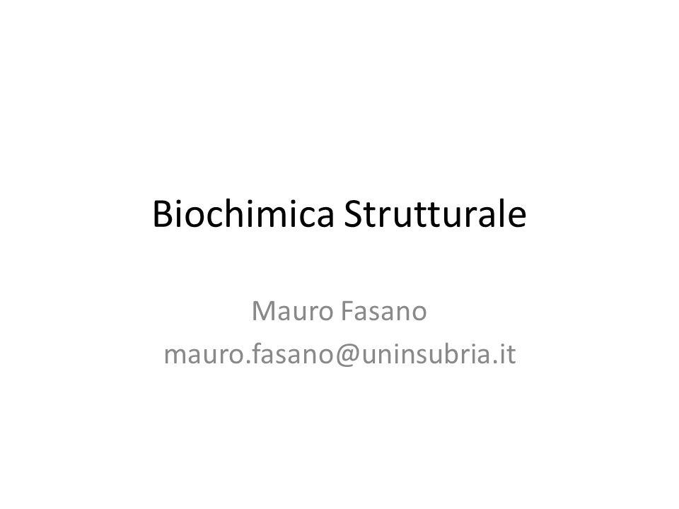 Biochimica Strutturale