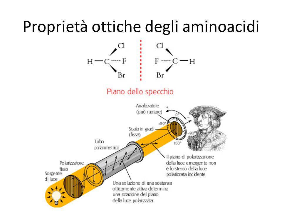 Proprietà ottiche degli aminoacidi